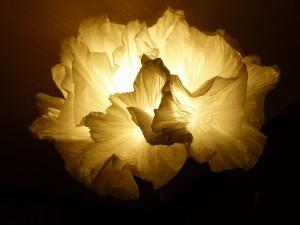 Coralys sculpture lumineuse en papier plissé