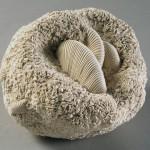 « Eclosions 2 » - 2011- Coton- Pliage pitonnage- © Musées d'Angers, P. David