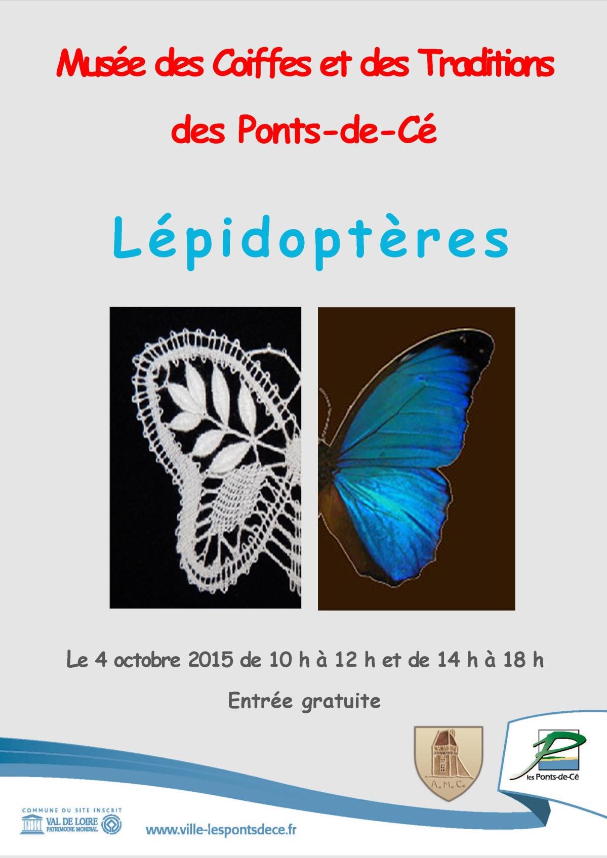exposition Lépidoptères au musée des coiffes et des traditions le 4 octobre 2015